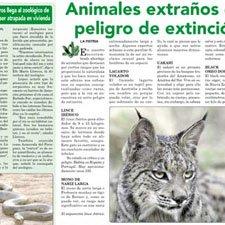 AnImales en Peligro de Extinción Noticias