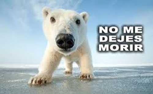 Como liberar Animales en Peligro de Extinción Consecuencias