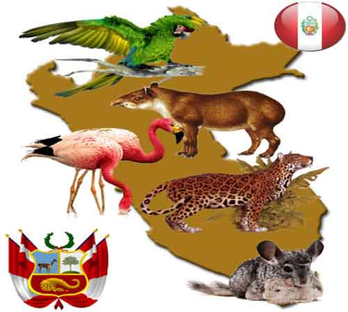 ¿Cuáles son los Animales en Peligro de Extinción Perú?
